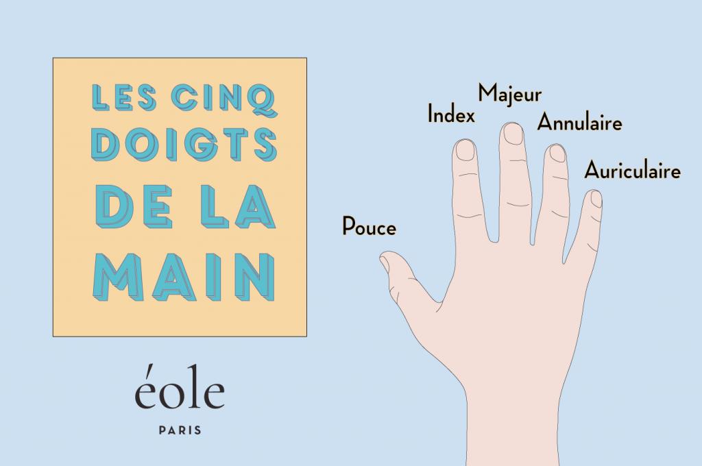 Les cinq doigts de la main