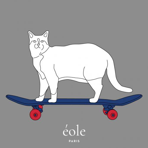 Cat Skate Grey