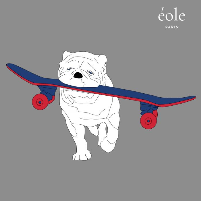 Dog Skate Grey