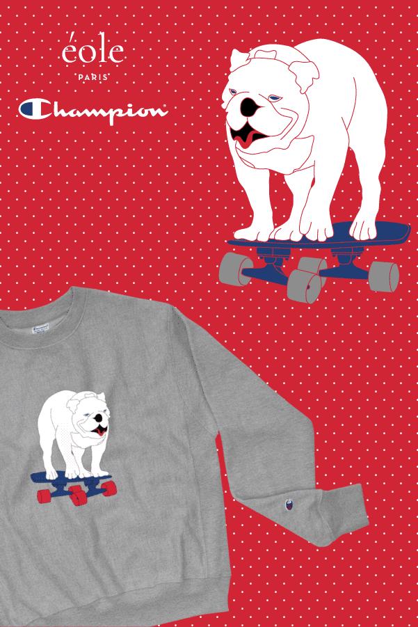 Sweat Gris chien skateboard - EOLE PARIS