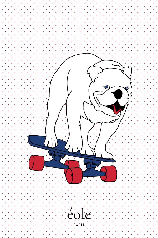 Chien sur son skate - EOLE PARIS