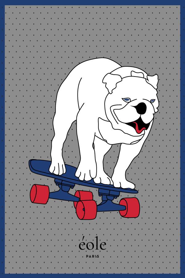 Chien sur son skate gris - EOLE PARIS
