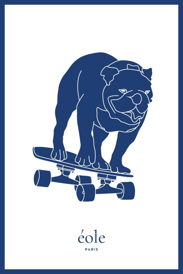 Chien sur son skate bleu et blanc - EOLE PARIS